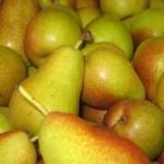 Pears - blush_1