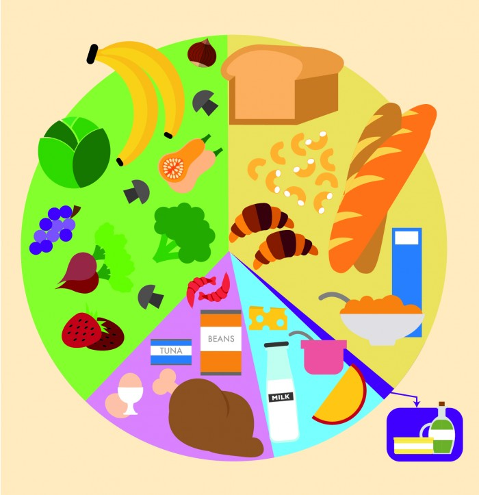 Eatwell Guide Illustration