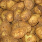 New Potatoes_1